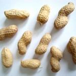 selektierte Erdnüsse